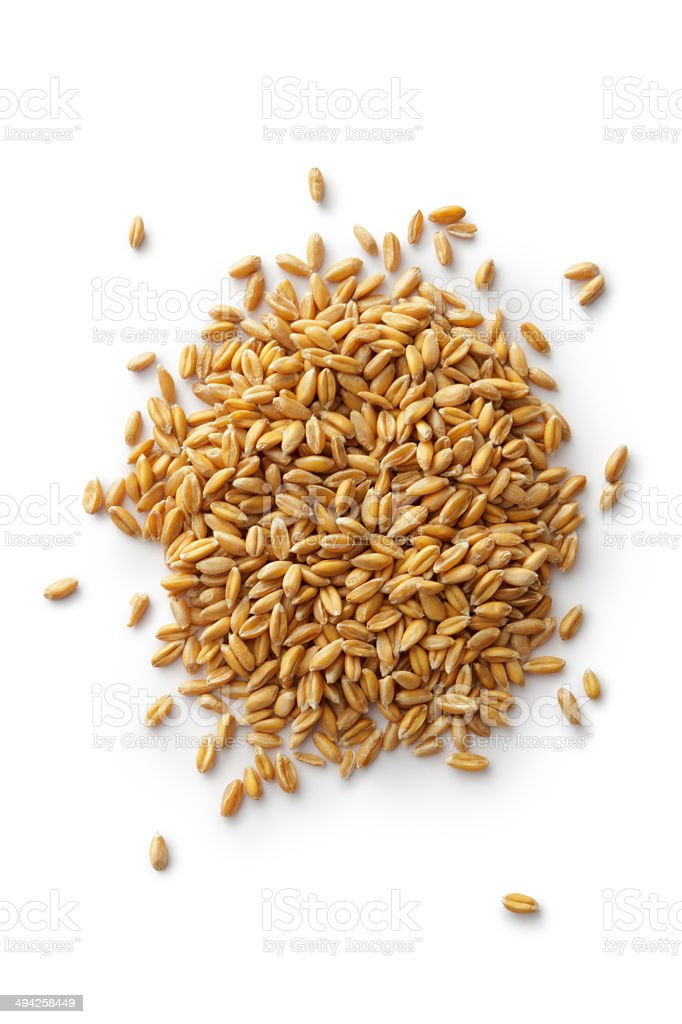 Grains: Spelt stock photo