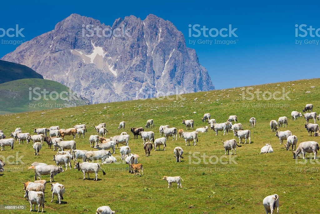 Gran Sasso mountain at Campo Imperatore stock photo