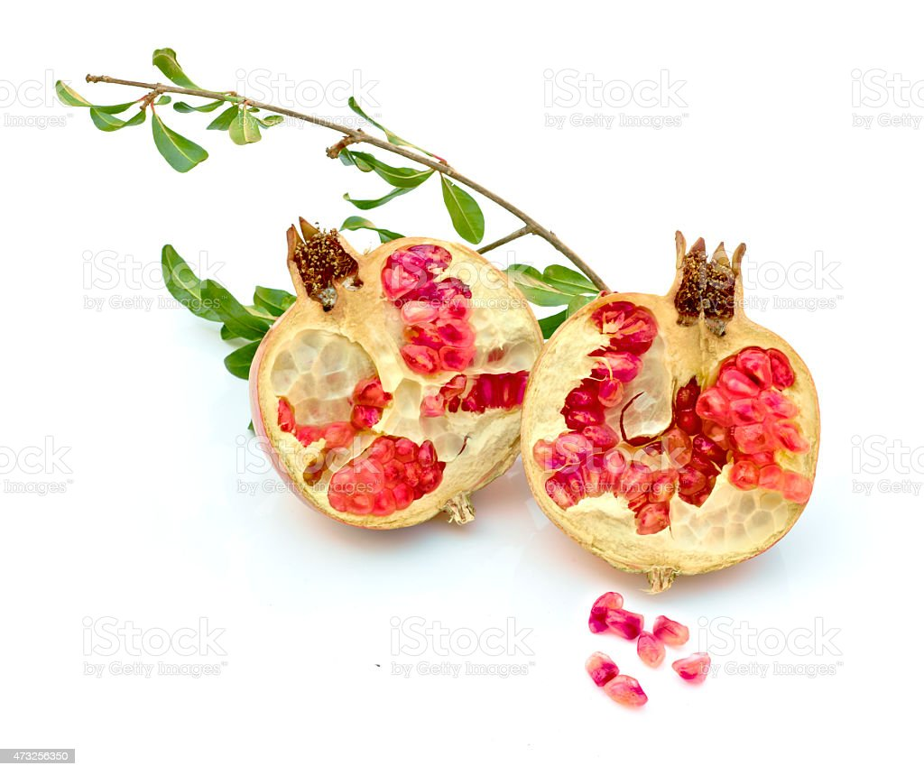 Granada roja abierta con su rama de arbol. stock photo