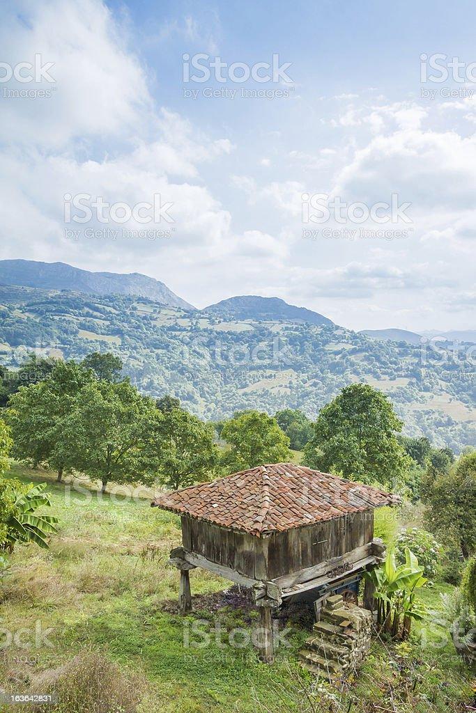 Granary of Asturias raised by pillars and known as