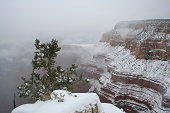 Grand Canyon in Snow