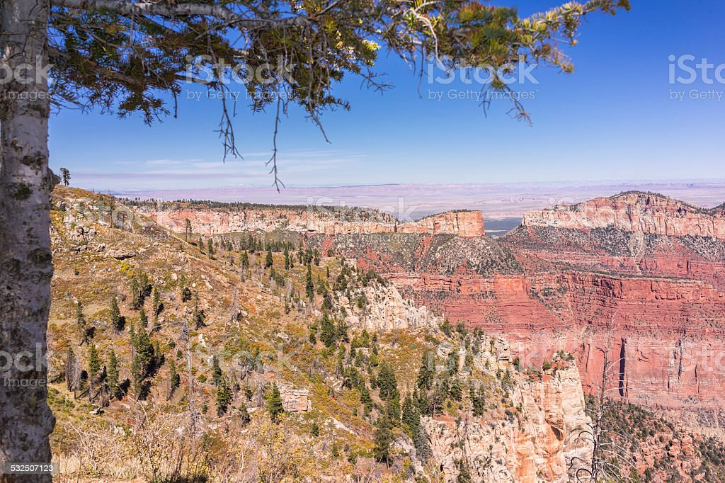 Grand Canyon National Park. North Rim. Overlook from Point Imperial stock photo
