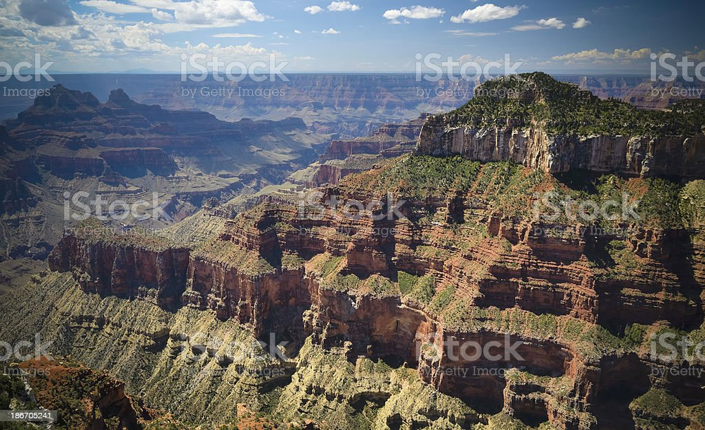 Grand Canyon, North Rim royalty-free stock photo
