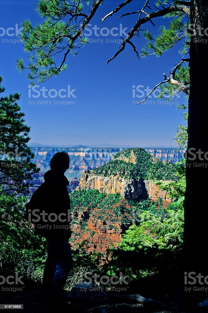Grand Canyon Overlook royalty-free stock photo