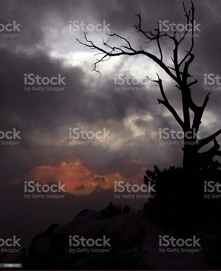 Grand Canyon Silhouette royalty-free stock photo