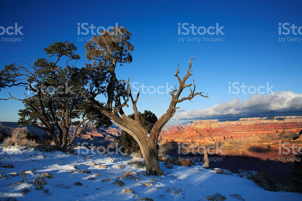 Grand Canyon Winter royalty-free stock photo