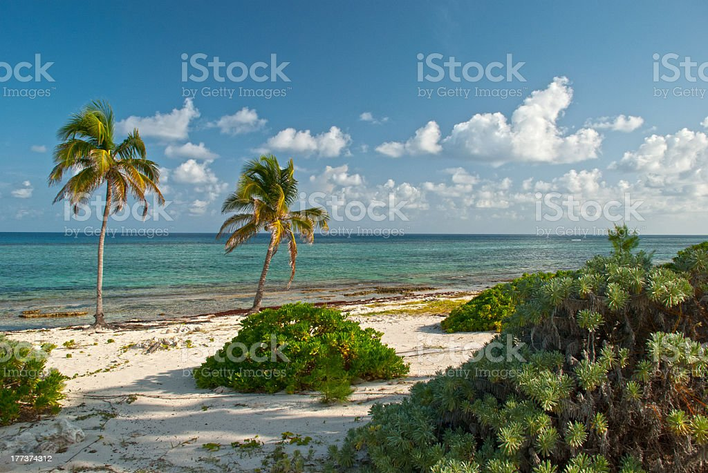 Grand Cayman Island stock photo