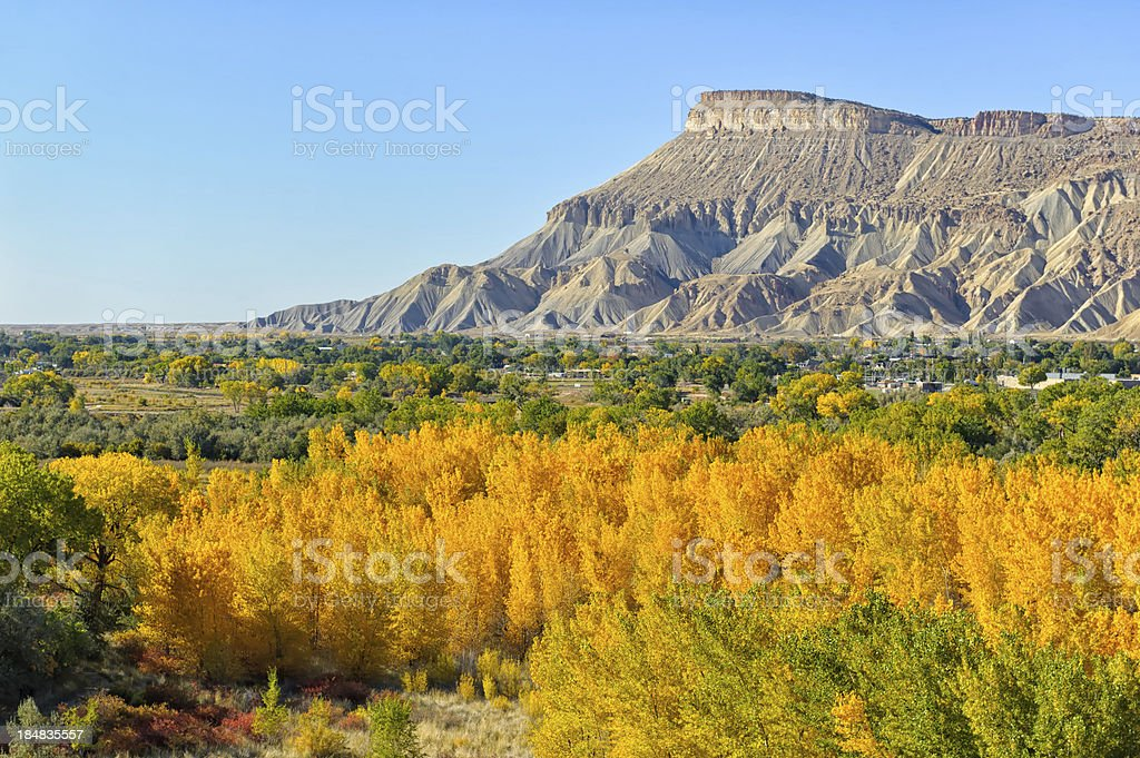 Grand Junction Colorado Fall Colors stock photo
