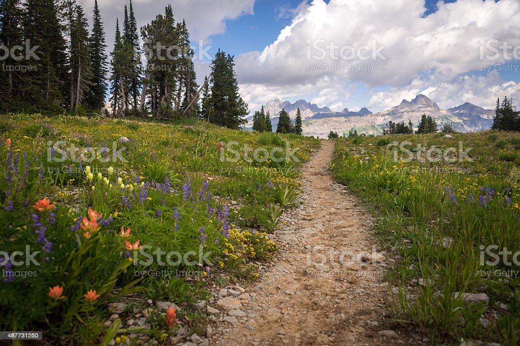 Grand Teton Hiking Trail stock photo