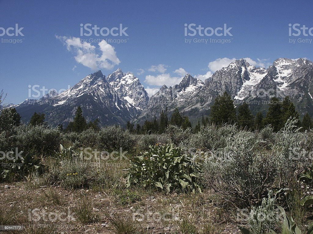 Grand teton range royalty-free stock photo