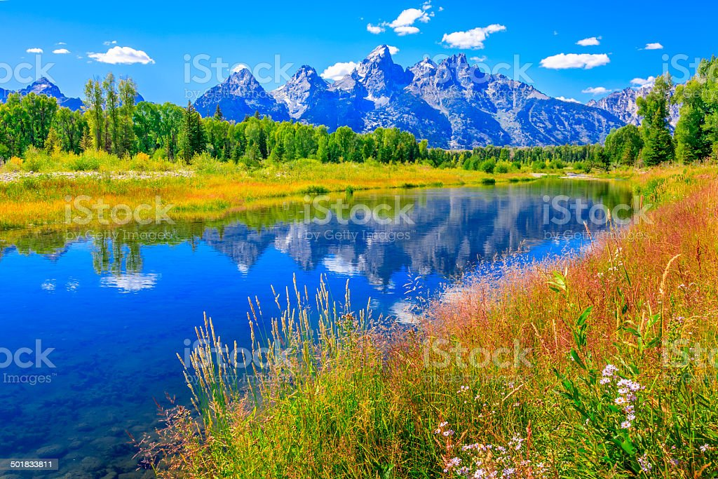 Grand Tetons mountains, wildflowers, summer, blue sky, water, Snake River stock photo