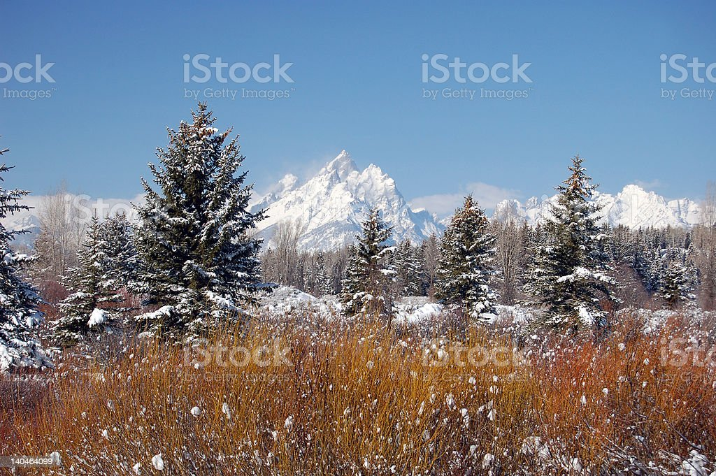 Grand Tetons near Moran Junction, Wyoming royalty-free stock photo