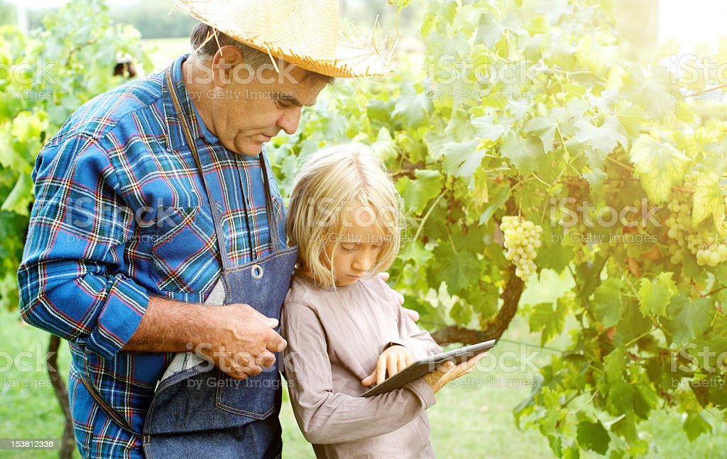 Grandfather and grandchildren with tablet in the vineyard stock photo