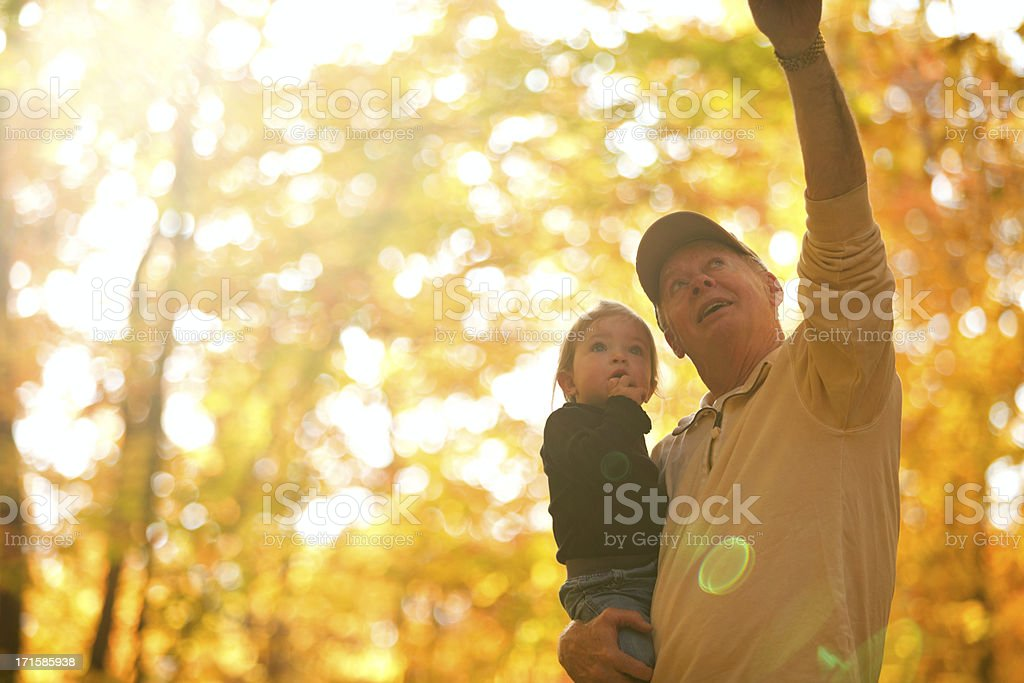 Grandfather and granddaughter autumn stroll. royalty-free stock photo