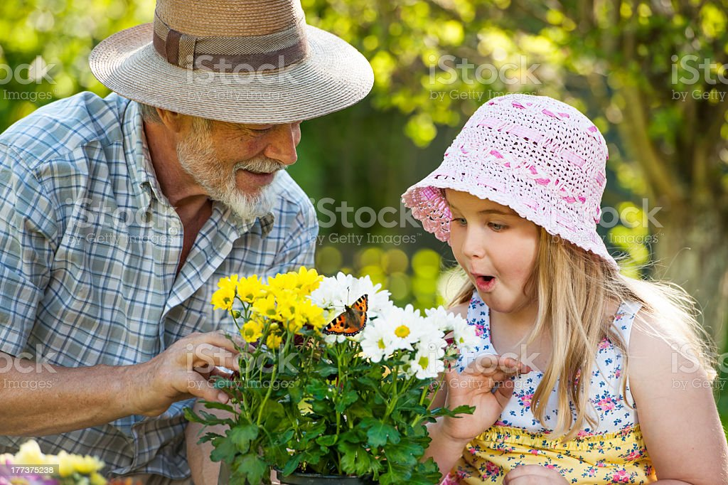 Grandfather and granddaughter enjoying gardening stock photo