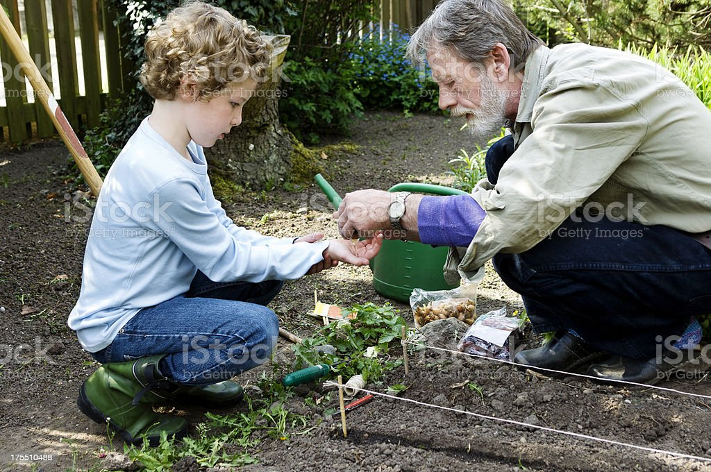 Grandfather and Grandson Gardening royalty-free stock photo