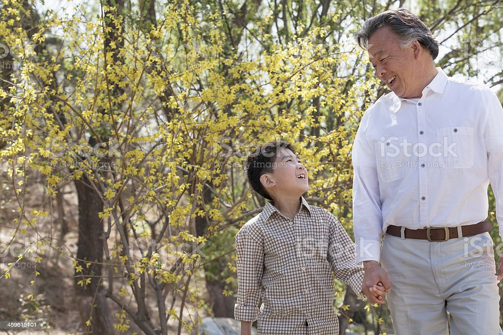 Grandfather and grandson going for a walk in springtime stock photo