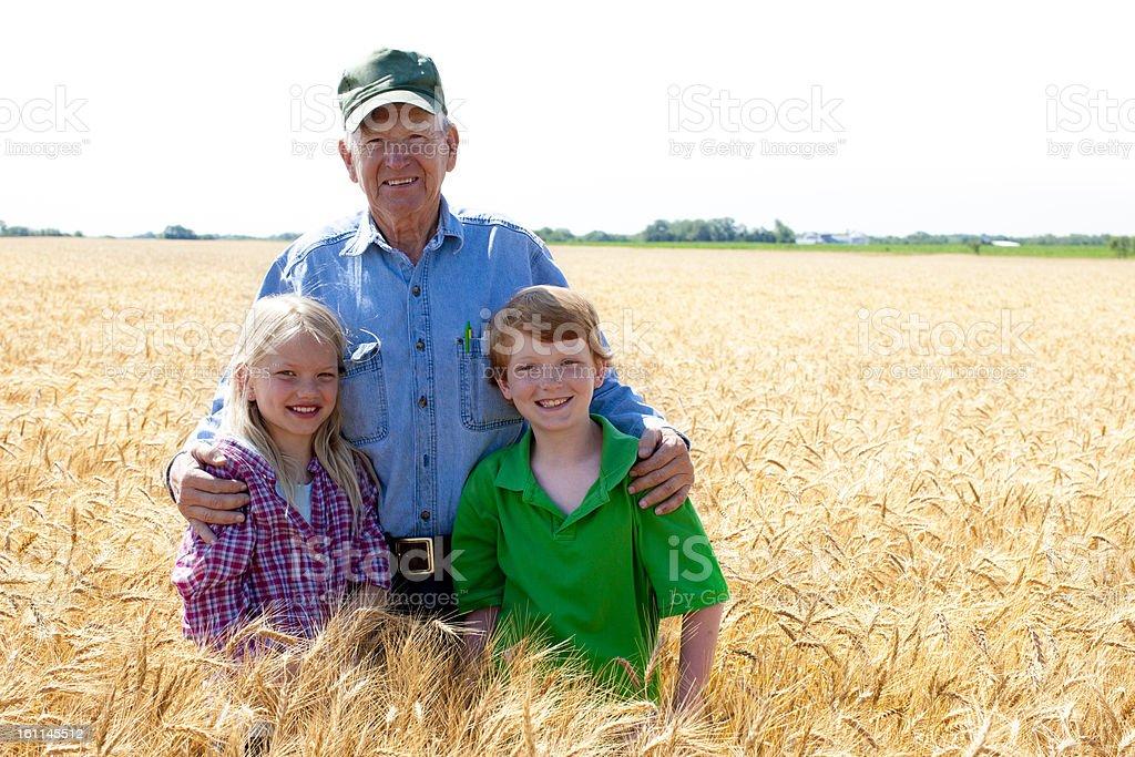 Grandfather Farmer Stands with Grandchildren in Wheat Field Fami stock photo