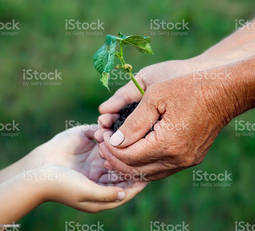 grandfather gives his grandson a germ stock photo