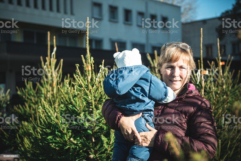 Grandmother and baby choosing christmas tree stock photo