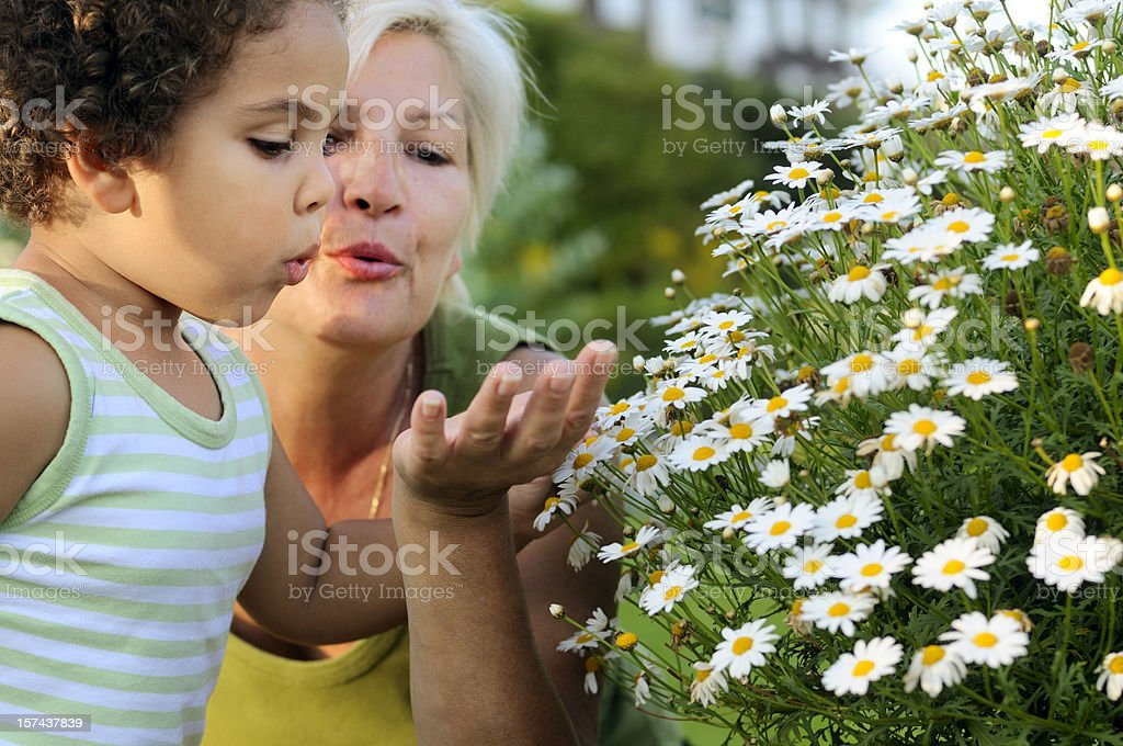 Grandmother and Granddaughter Blowing a Flower Away ( serie) royalty-free stock photo