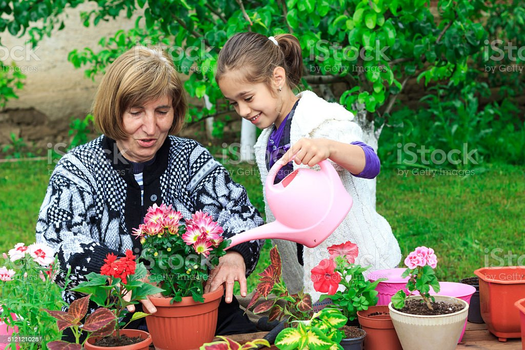 Grandmother and granddauther watering flowers in pot stock photo