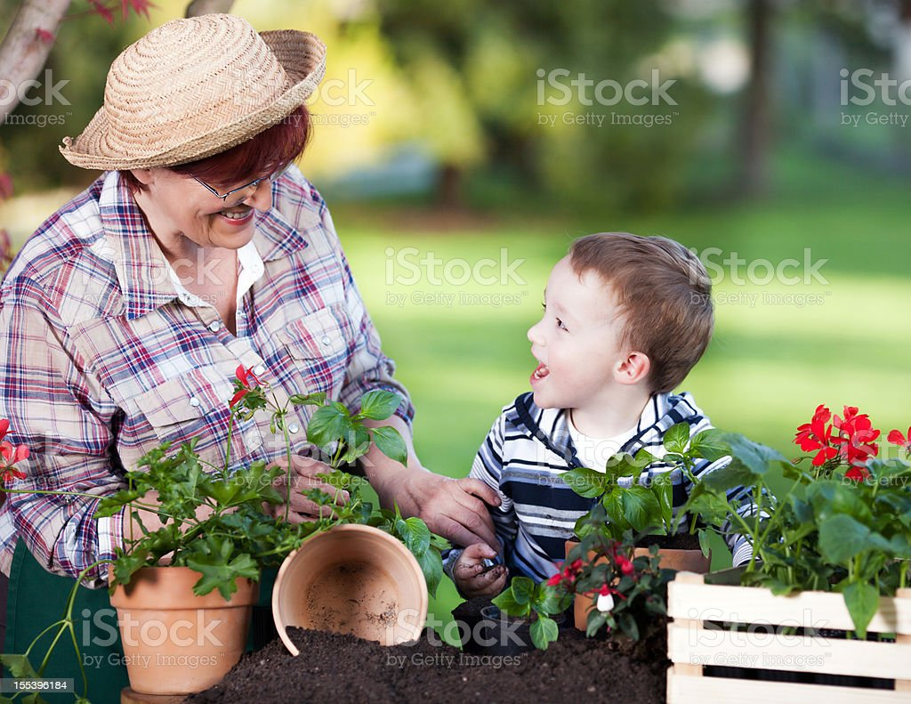 Grandmother and grandson gardening. royalty-free stock photo