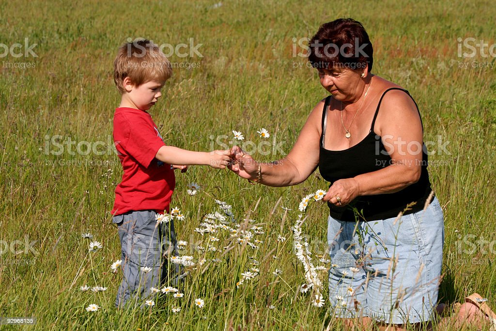 Grandmother and grandson picking flowers stock photo