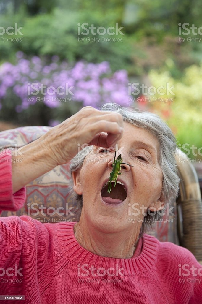 grandmother and insect royalty-free stock photo