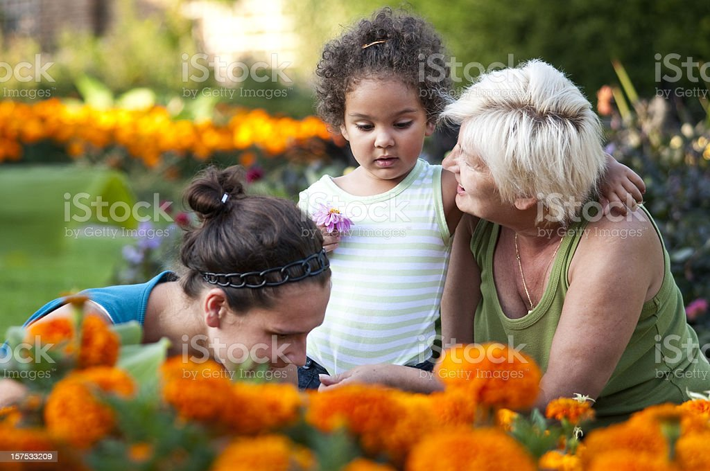 Grandmother, Daughter and granddaughter Gardening ( serie) royalty-free stock photo
