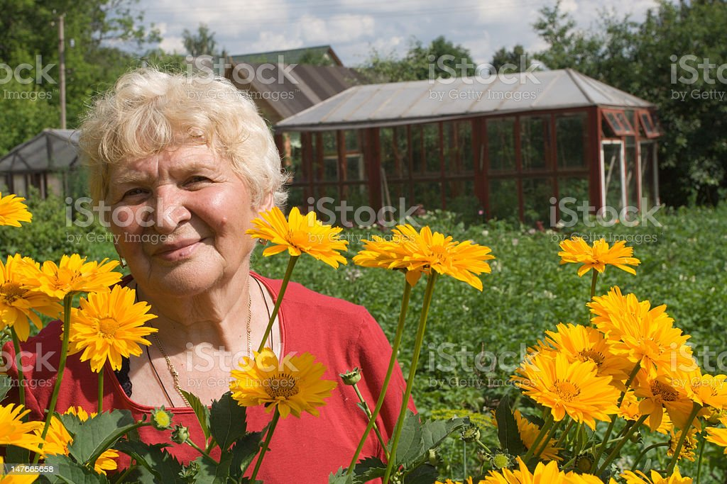 Grandmother in the garden royalty-free stock photo