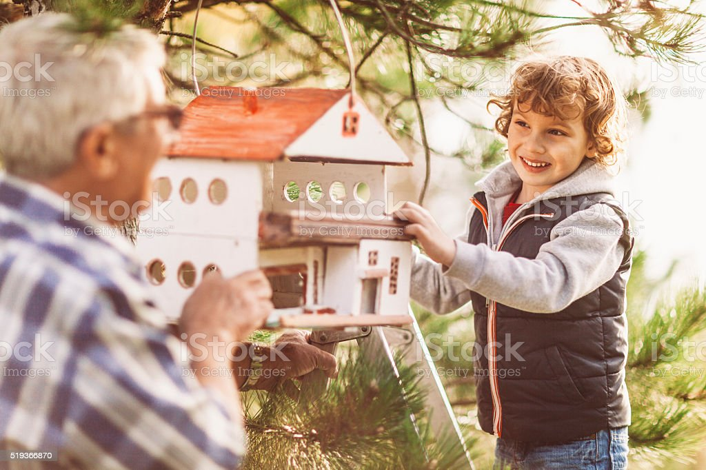 Grandpa and his grandson installing a birdhouse stock photo