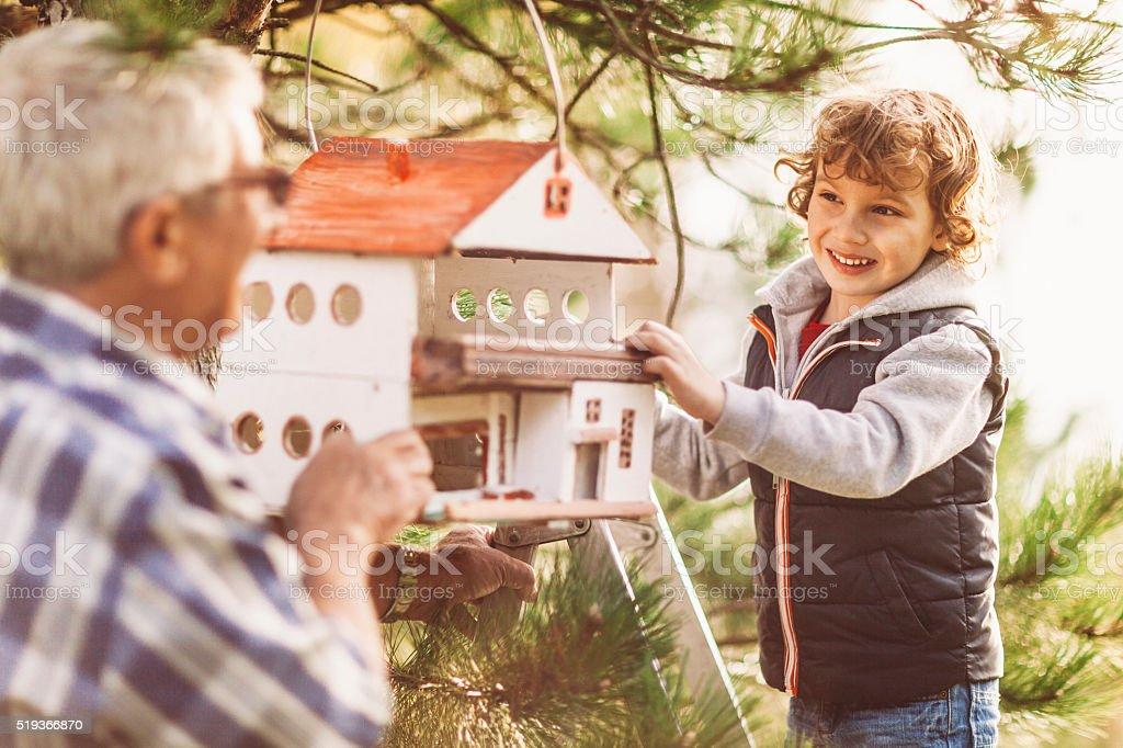 Grandpa and his grandson installing a birdhouse stock photo