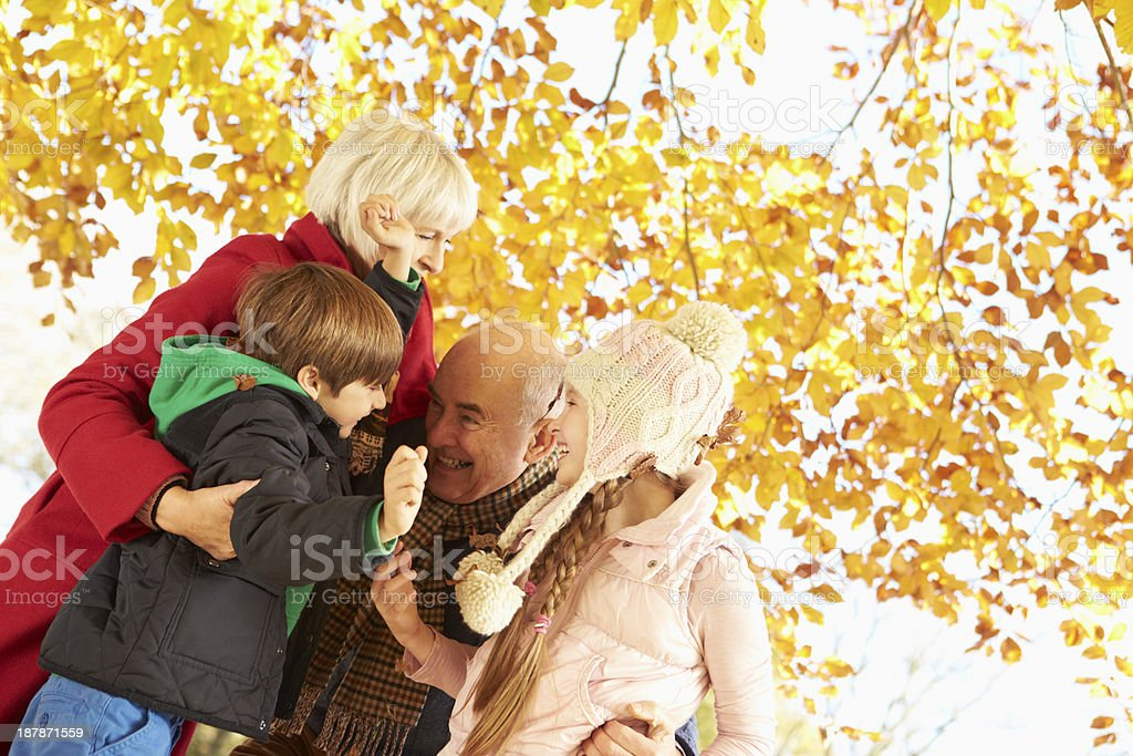 Grandparents And Grandchildren Playing Under Autumn Tree royalty-free stock photo