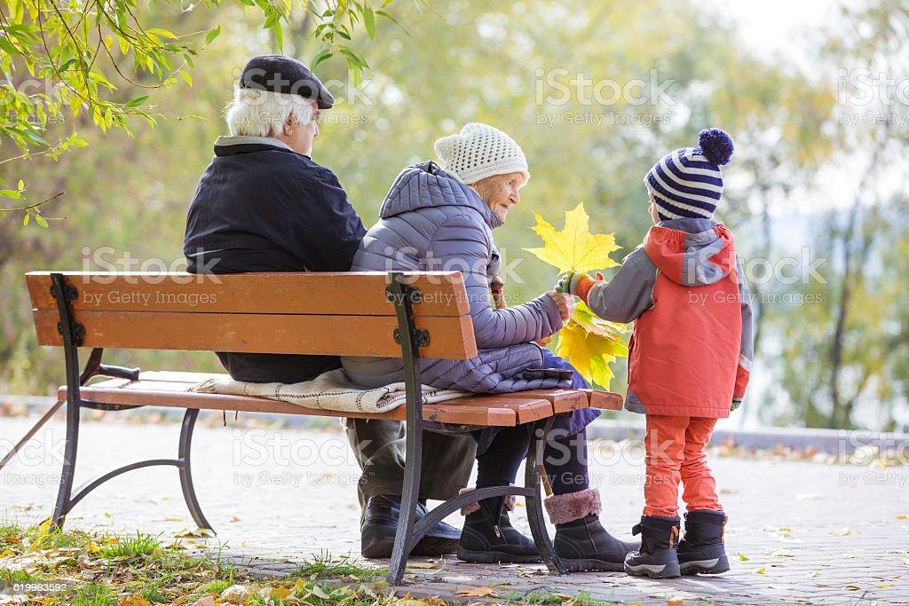 Grandparents and grandson in autumn park stock photo