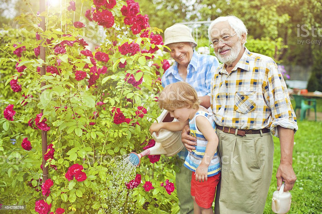 Grandparents and grandson in the garden stock photo