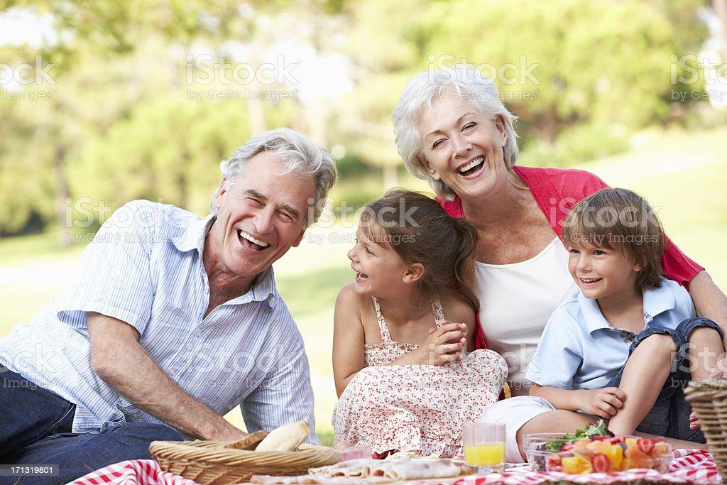 Grandparents and their grandchildren having a picnic stock photo