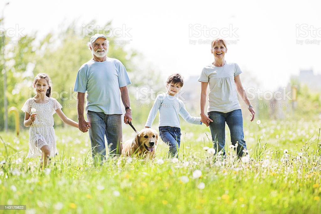 Grandparents and their grandchildren in the park holding hands. stock photo