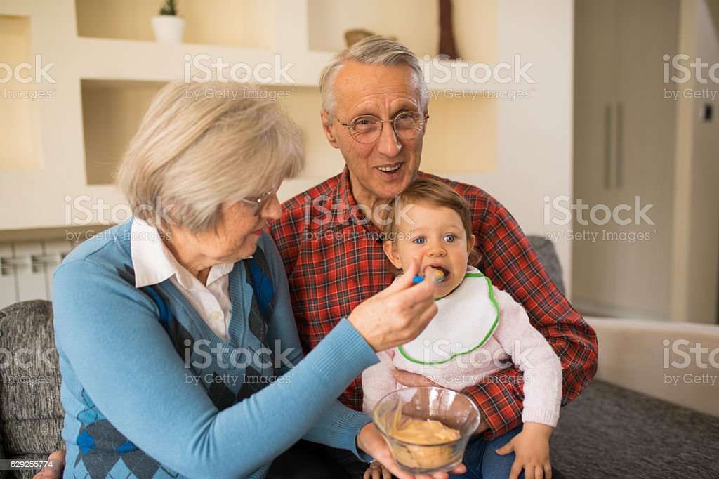 Grandparents feeding their adorable granddaughter stock photo