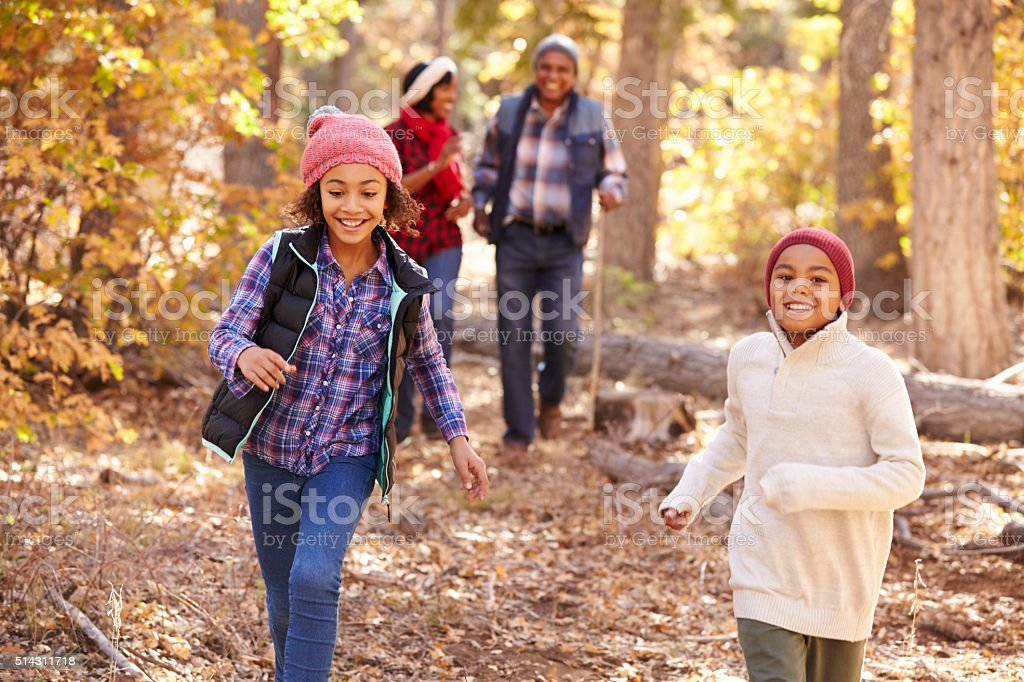 Grandparents With Children Walking Through Fall Woodland stock photo