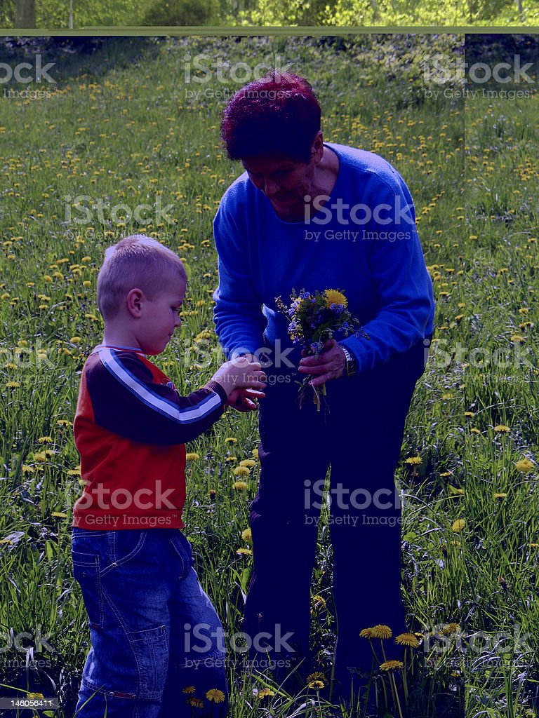 grandson and grandmother on meadow royalty-free stock photo