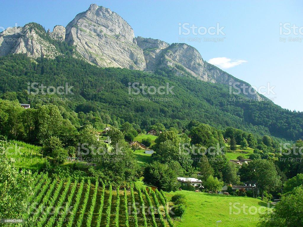 Granite Outcrops of Swiss Alps near Sarganz Switzerland and Liechtenstein stock photo