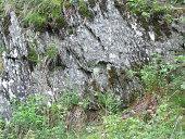 Granitschiefer am Quellgebiet der Eder