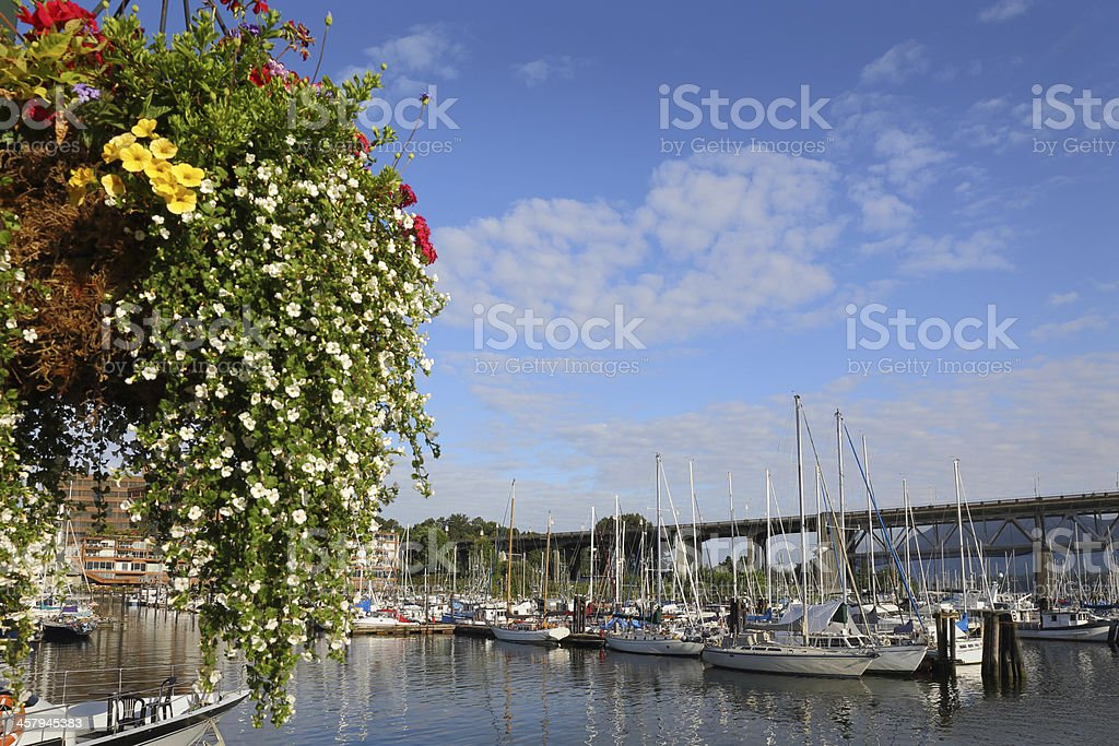 Granville Island Marina Flower Basket, Vancouver royalty-free stock photo