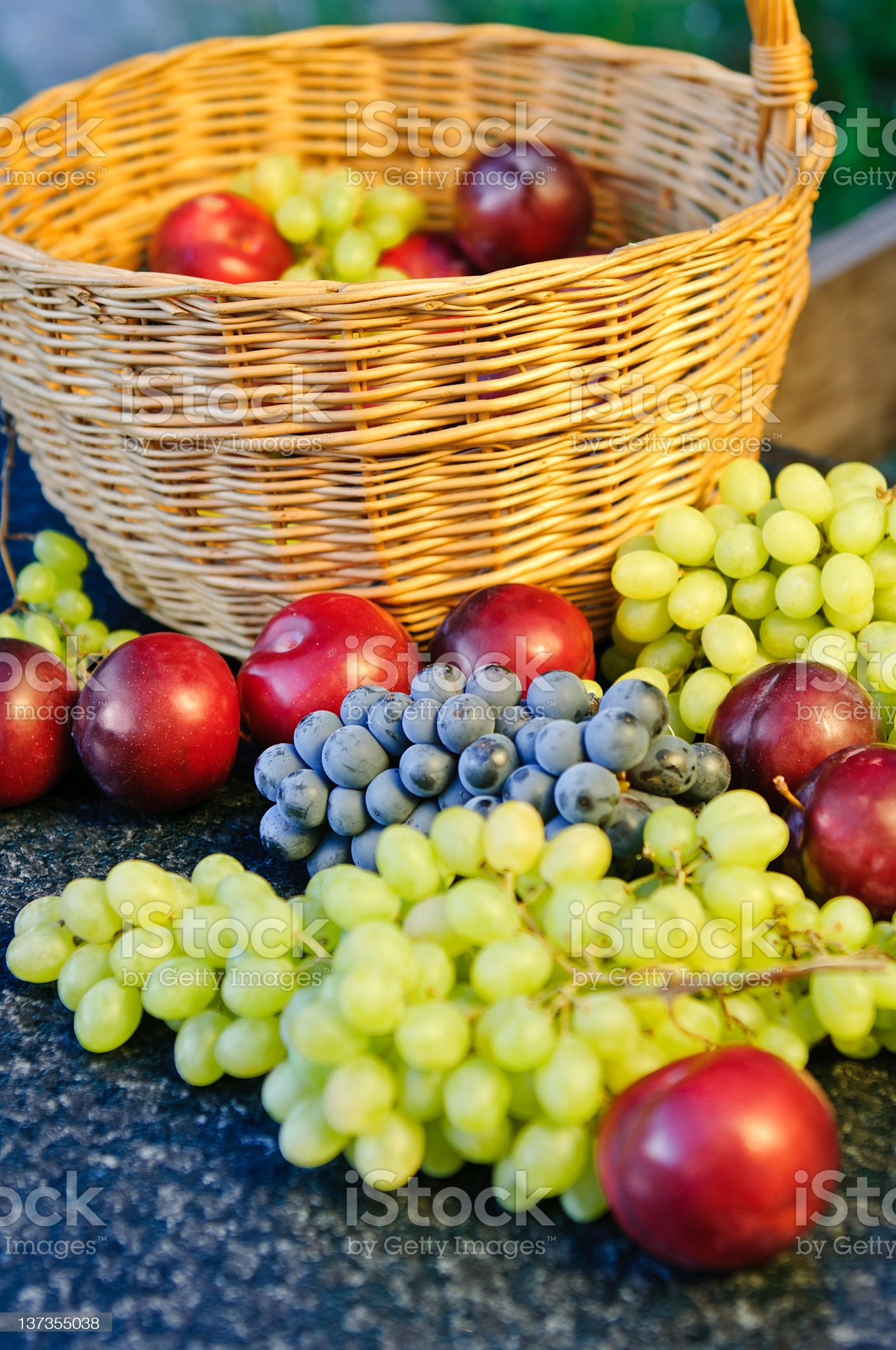 Grape and plums royalty-free stock photo