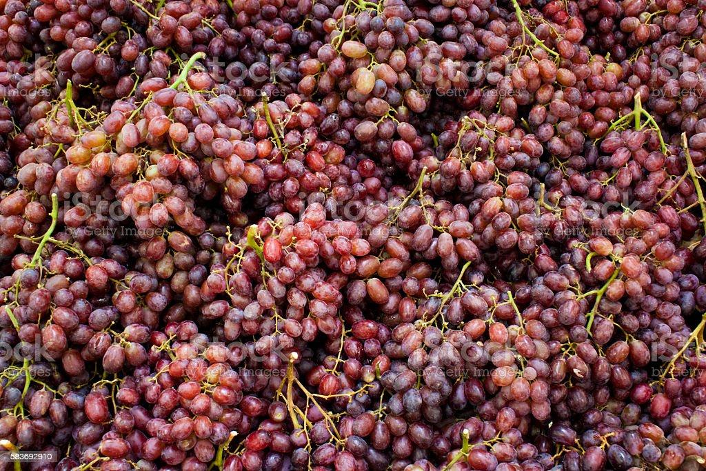 Grape background stock photo