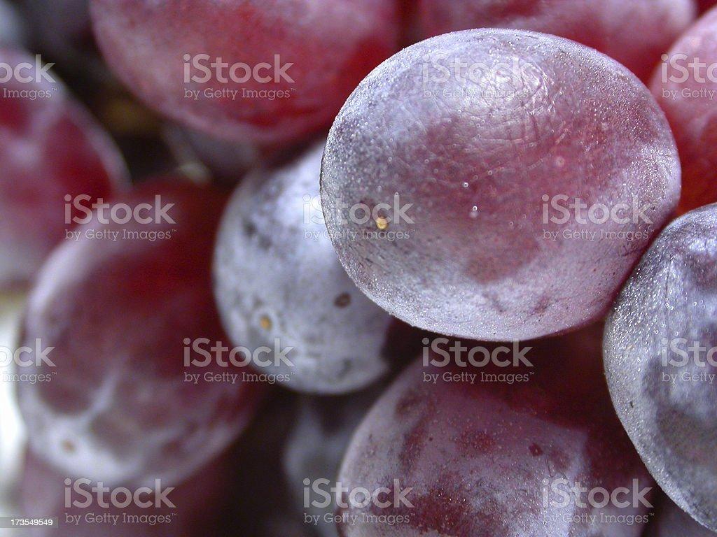 Grape Big Bunch royalty-free stock photo