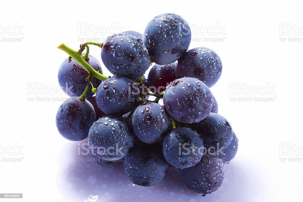 Grape cluster with water drops royalty-free stock photo