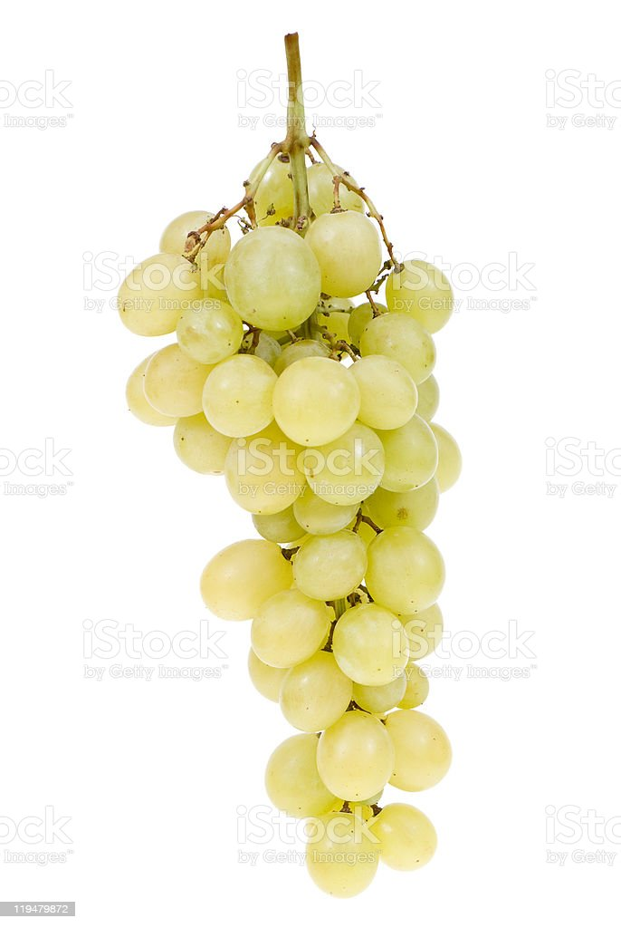 grape clusters stock photo