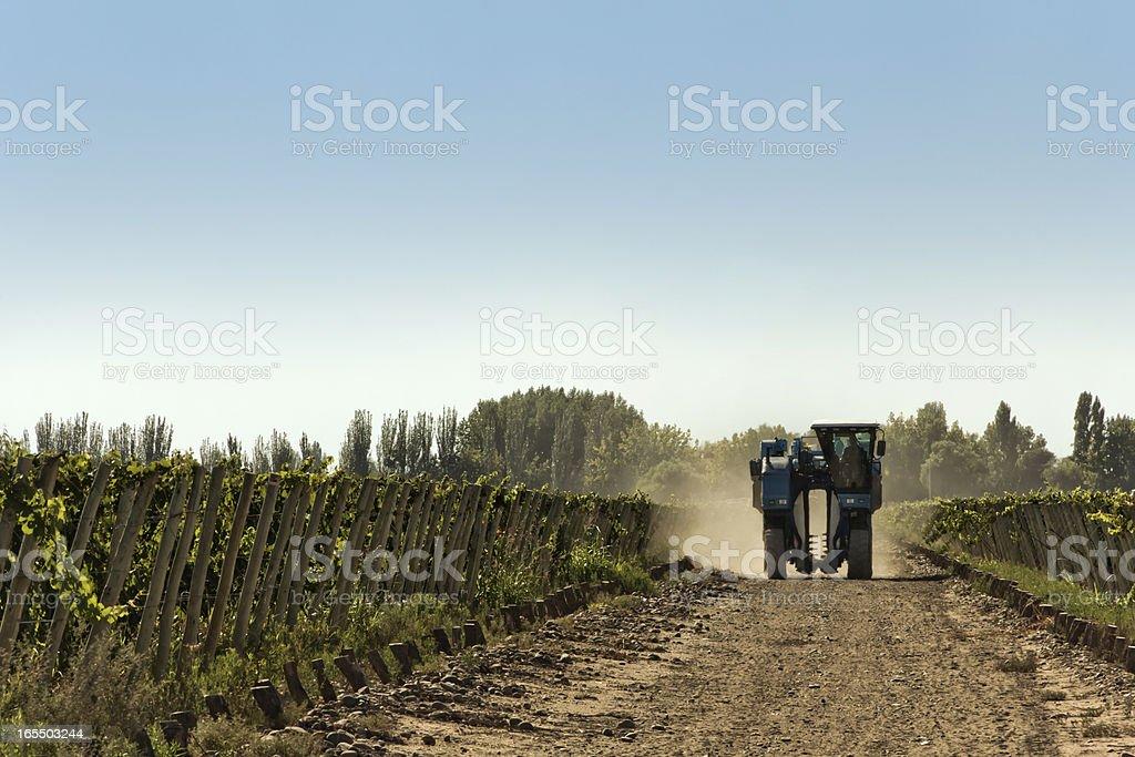 Grape harvesting machine royalty-free stock photo
